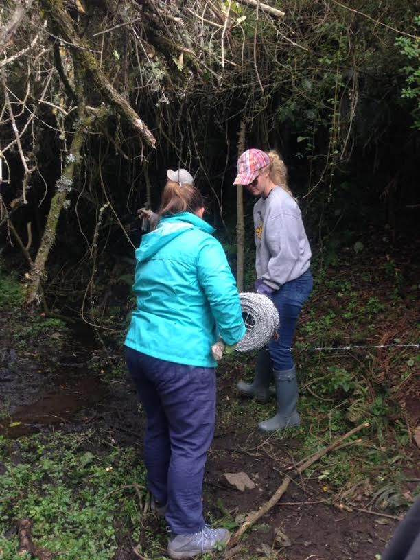 Cassie (izquierda) trabajando con otro participante en el viaje