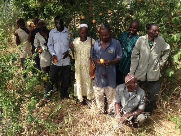 Kansongho Community Garden